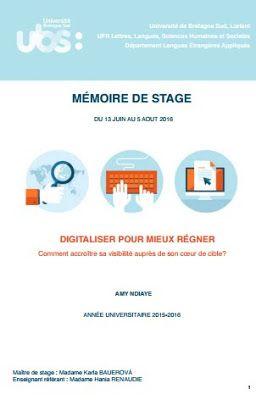 Exemple De Problématique Rapport De Stage Commercial ...