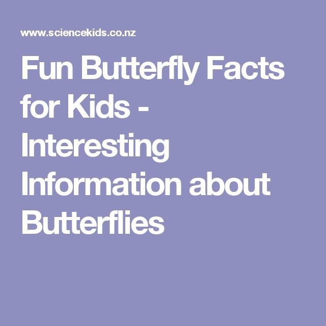 Fun Butterfly Facts for Kids - Interesting Information about Butterflies