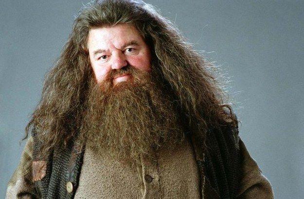 Tirei Rúbeo Hagrid! Quem seria o orientador do seu TCC em Hogwarts?