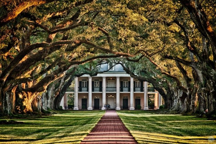 abandoned southern plantations for sale | Oak Plantation- an abandoned plantation in Louisiana... dream entrance