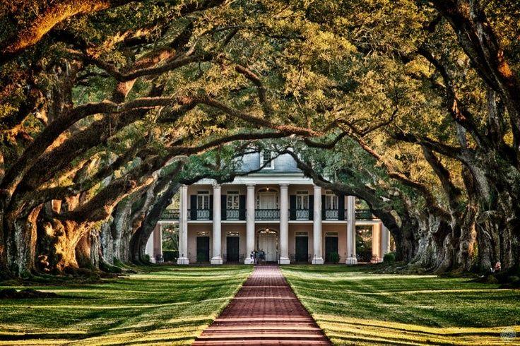 abandoned southern plantations for sale | Oak Plantation- an abandoned plantation in Louisiana... dream entrance