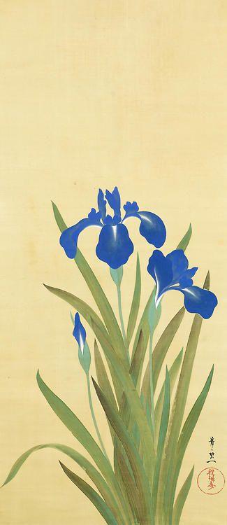 Irises. Suzuki Kiitsu (Japanese, 1796-1858). ca. 1893. Ink, color and gold on silk