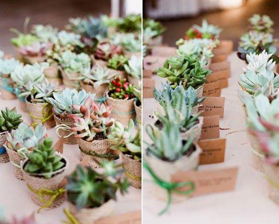 17 mejores im genes sobre flores y cactus en pinterest - Macetas originales para plantas ...