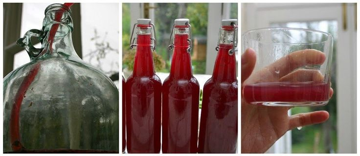 I may receive a commission if you purchase something mentioned in this post. More details here. Well, everyone, I made Blackberry Cider, all by myself! OK, so I have to start off by telling you that I don't have any real experience with brewing anything besides kombucha (which you should totally try, if you haven't!) … #homebrewingrecipescider