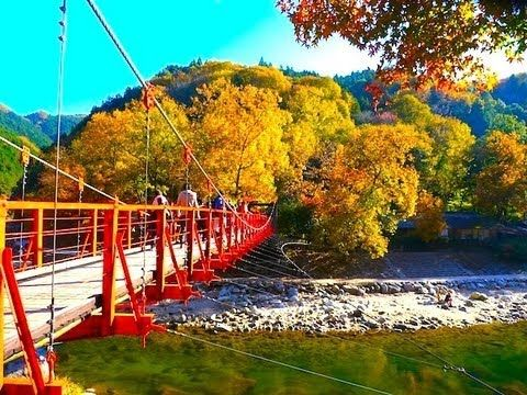 [HD]秋の香嵐渓の紅葉  Autumn in korankei 紅葉便り 日本の紅葉 - YouTube