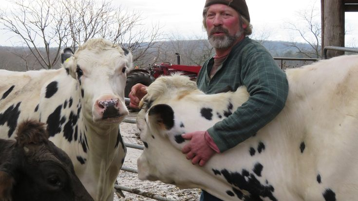 The nation's dairy farmers are facing their fourth year of depressed milk prices. The outlook is so bleak, it's increased worries about farmer suicides. One recent outreach effort drew criticism.
