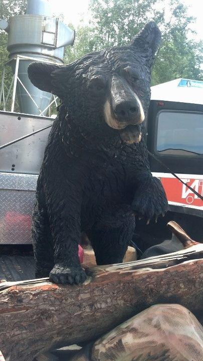 Best black bears images on pinterest bear
