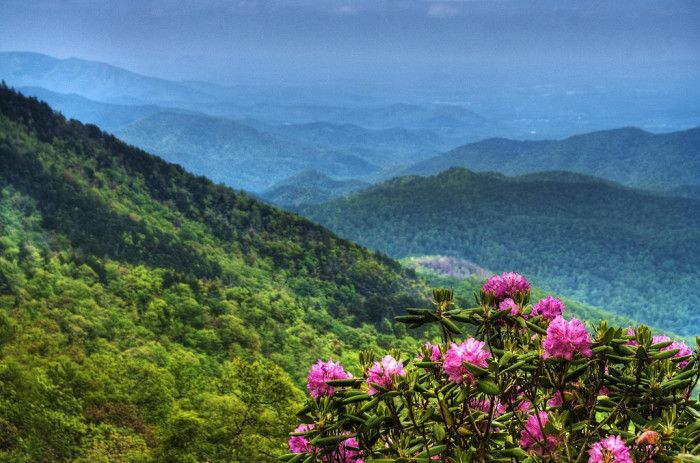 15 Shocking Facts About North Carolina.