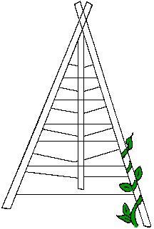 Build a Bean Tower