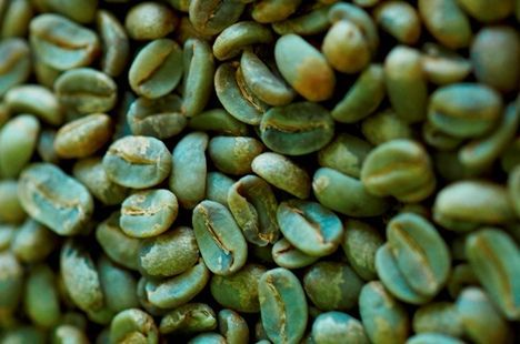 Buying Green Coffee Beans Wholesale
