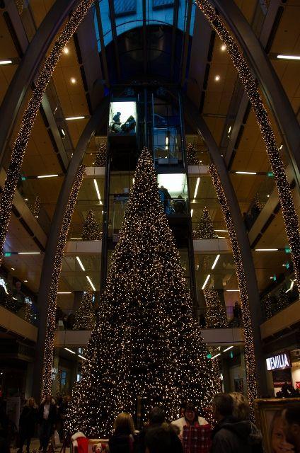 Grown-up Travel Guide Daily Photo: Christmas Tree, Hamburg, Germany