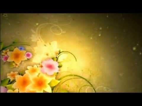 Seleção gospel 02 - As melhores musicas evangelicas - YouTube