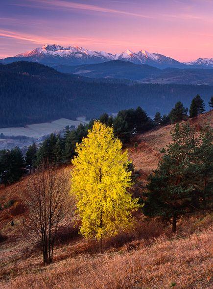Elisabeth §♥Lesnicke Sedlo, Pieniny National Park (PIENAP), Slovakia