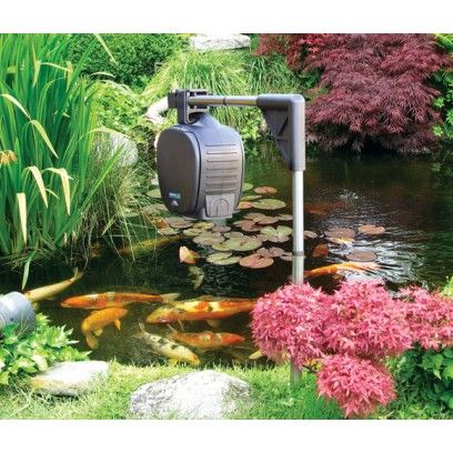 25 Best Ideas About Fish Feeder On Pinterest Rustic