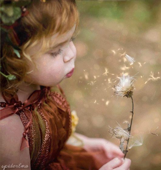 Se quisermos criar felicidade em nossas vidas, precisamos aprender a semear a felicidade!