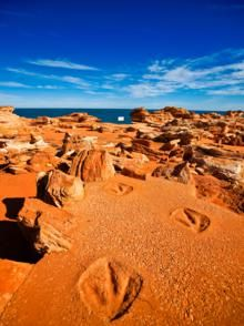 Dinosaur footprints in rocks at Grantheame Pt Broome WA Australia - Walk this way...