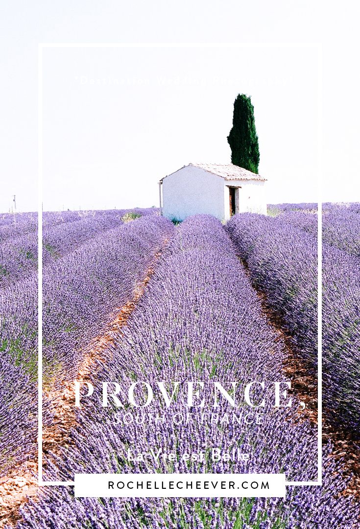 Provence, South of France   Destination Wedding Photography #lavenderfields #analogfilmphotography
