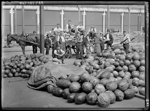 Sydney markets, by Rex Hazlewood, c. 1911-1916.  Find more detailed information about this photographic collection: http://acms.sl.nsw.gov.au/item/itemDetailPaged.aspx?itemID=53463  From the collection of the State Library of New South Wales http://www.sl.nsw.gov.au