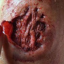Maquillage professionnel effets spéciaux, prothèse double en silicone , faux sang  - Christelle Lays