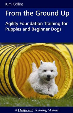 Agility Foundation Training For Puppies And Beginner Dogs