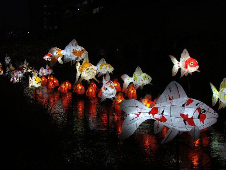 chinese paper lanterns - Google Search   Lantern Glow   Pinterest ...