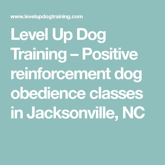 Level Up Dog Training – Positive reinforcement dog obedience classes in Jacksonville, NC #DogObedienceTipsandAdvice