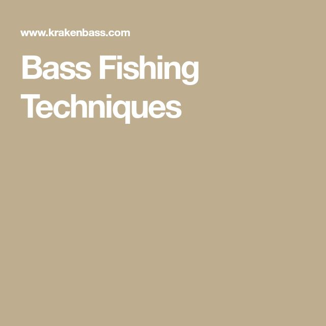 Bass Fishing Techniques