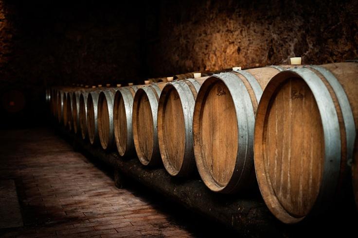 Un tour alla scoperta dell'affascinante mondo dei vini regionali italiani.  Ogni mese 3 bottiglie selezionate da un esperto, da assaggiare comodamente a casa con una formula su misura per te.