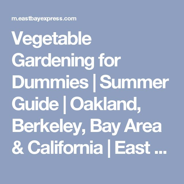 Flower Garden For Dummies: Best 25+ Gardening For Dummies Ideas On Pinterest