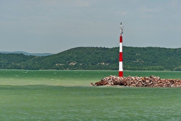 """Very """"green"""" sight from the Galamb-sziget [trans. Pigeon Island] :) / """"Zöld"""" kilátás a Galamb-szigetről."""