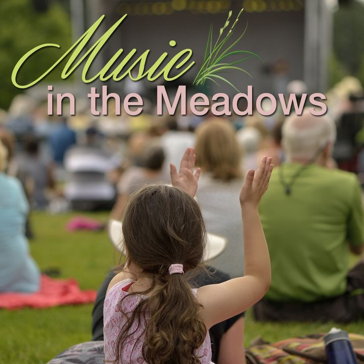 ANB Bank is fueled up and ready for the second Music in The Meadows concert in Castle Rock, CO! The event, presented by The Meadows at Castle Rock, starts at 6:30 p.m., tonight, June 22, in Butterfield Park, with Premium Diesel, a Denver-based country band! Member FDIC/Equal Housing Lender