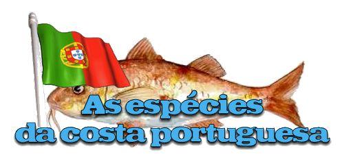 KATEMBE - A PESCA EM ÁGUA SALGADA - AS ESPÉCIES DA COSTA PORTUGUESA