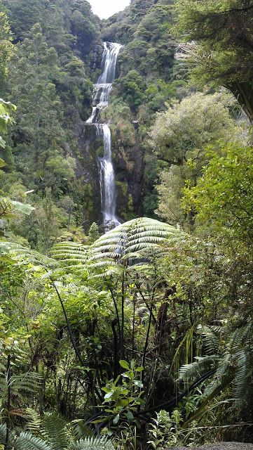 If you like waterfalls, you might enjoy the Kitekite track in the Waitakere Regional Park. It is a nice, easy walk for those days when you want a bit of nature without too much effort.