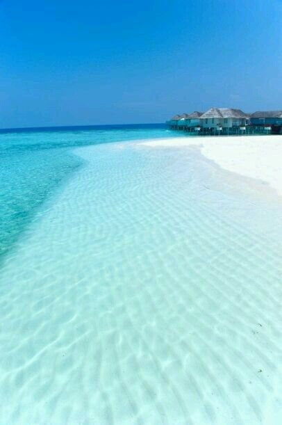Maldives❤❤