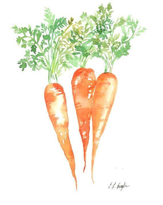Carrot Watercolors Paintings Original 4 X 6 Vegetable Artwork