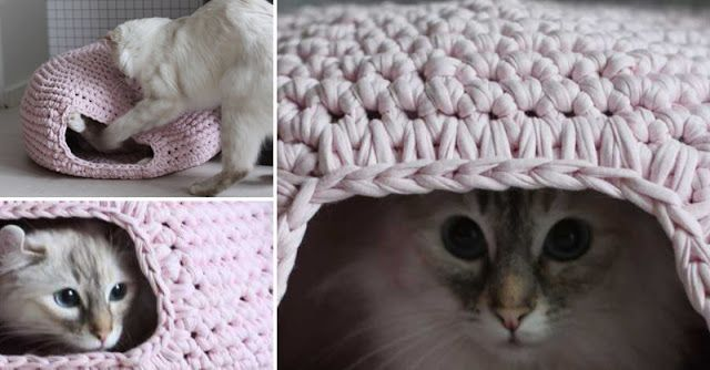 1000+ ideas about Crochet Cat Beds on Pinterest   Crochet ...