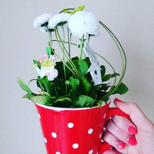 Kávé helyett egy kis tavasz csalogató vidámság. Legyen szép napod! . . . #edinabaloghart #pöttyös #vidám #tavasz #dotted #happy #happyday #spring #happyartist #artistlife #fb http://ift.tt/2FvIrVy
