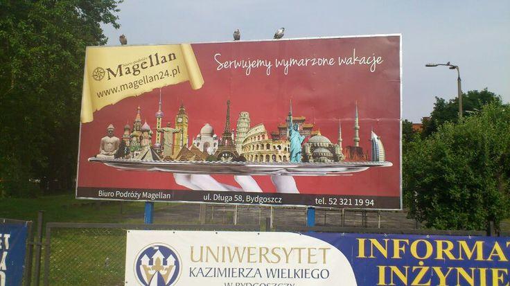 billboard Biura Podróży Magellan (projekt, druk M4Bizz)