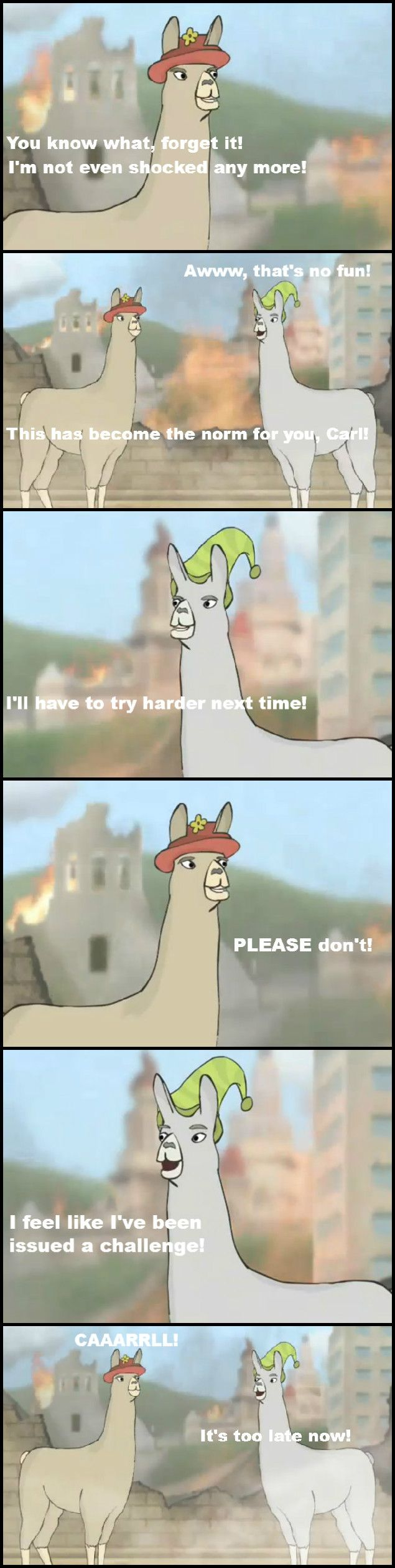 Llamas With Hats