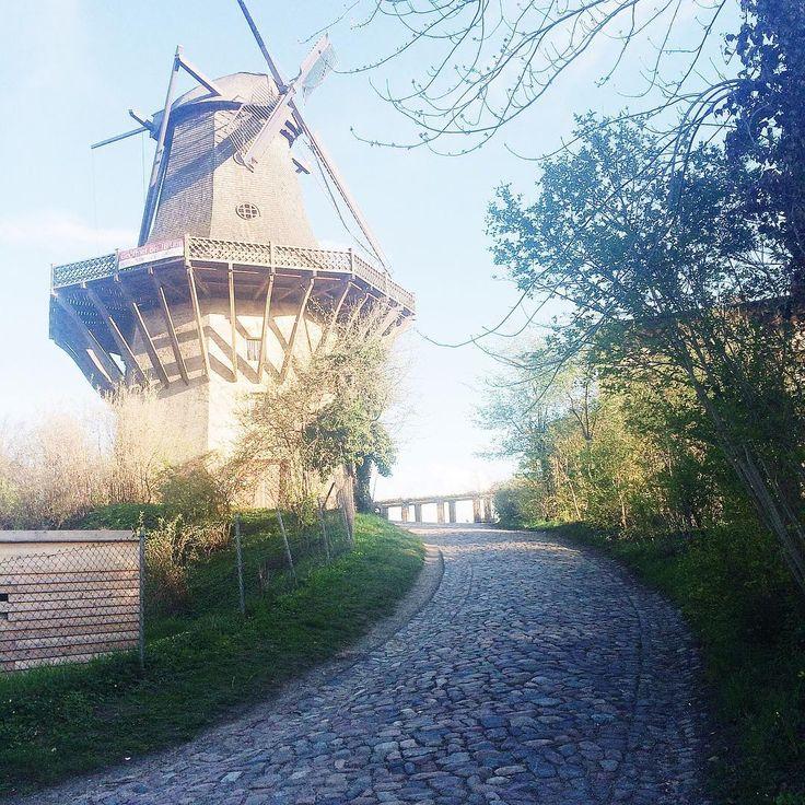 Mühle in Sanssousi  #potsdam #mühle #schlosssanssouci #schloss #deutschland #ig_eu #ig_europe #instagood #vsco #vscocam #vscogood #berlin #vscomoment