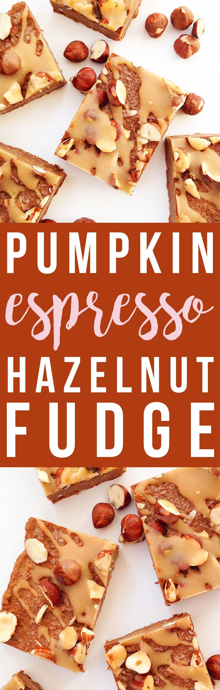 Pumpkin Espresso Hazelnut Fudge (Vegan, Paleo, Raw)   Fresh Planet Flavor