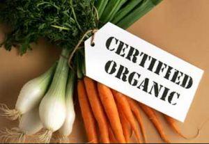 How to Buy Organic Foods http://trendingtopicnow.com/how-to-buy-organic-foods/ #organic #organicfood