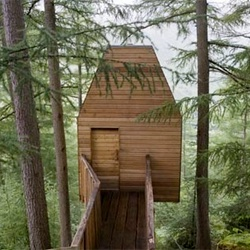 This could be a writing room for Mommy: Artists Studios, Dreams Houses, Houses Art, Art Studios, Architects Workspaces, Trees Houses, Fraser Architects, Malcolm Fraser, Wood Houses