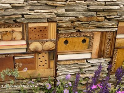 Try to make friendly garden using ground cover plants (shelter for small mammals and amphibians), berry-bearing shrubs (shelter and food for birds) and nectar-rich flowers such as lavender, sedum and buddleja (for bees, butterflies and other insects ). Nesting boxes for birds, shelter for toads and hedgehogs and insects hotels can be very decorative and also provide animal life in the garden!