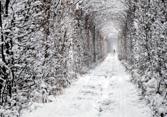 Rivnens'kyi district, Ukraine Tunnel of Love in winter Local legend has it that couples who visit the tunnel will be granted a wish, provided their intentions are sincere.