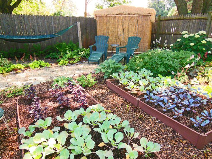 Shade Garden Design Technique   Vegetable Color Blocking   Shawna Coronado