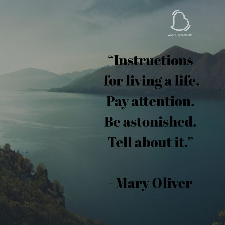 Instructions for living a life Pay Attention, Be astonished Tell about it #Instructions #Life #Religion #HappyBlogging #NewBlog #BlogBeats