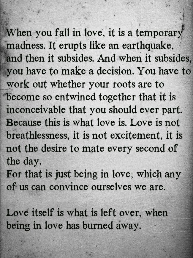 When You Fall In Love, It Is A Temporary Madness...