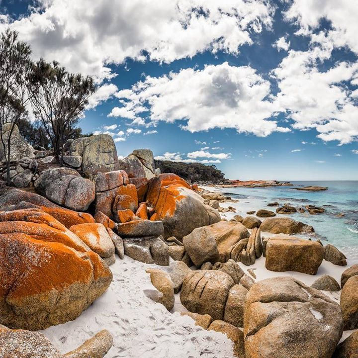 Anyone else feel like going for a swim? Image send in by Tom & Ella from the Bay of Fires on the East Coast https://instagram.com/p/BbMkNhGhbPm/