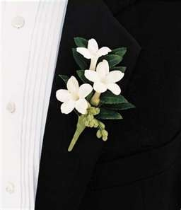 """Exactly what I want for boutonnieres for groomsmen b/c they look like stars, and we're doing the moon and stars """"theme""""  http://www.amazon.com/gp/product/B00OQFZC26/ref=as_li_qf_sp_asin_il_tl?ie=UTF8&camp=1789&creative=9325&creativeASIN=B00OQFZC26&linkCode=as2&tag=httpwwwin06c0-20&linkId=32GEDHC5A4TXMIMR"""